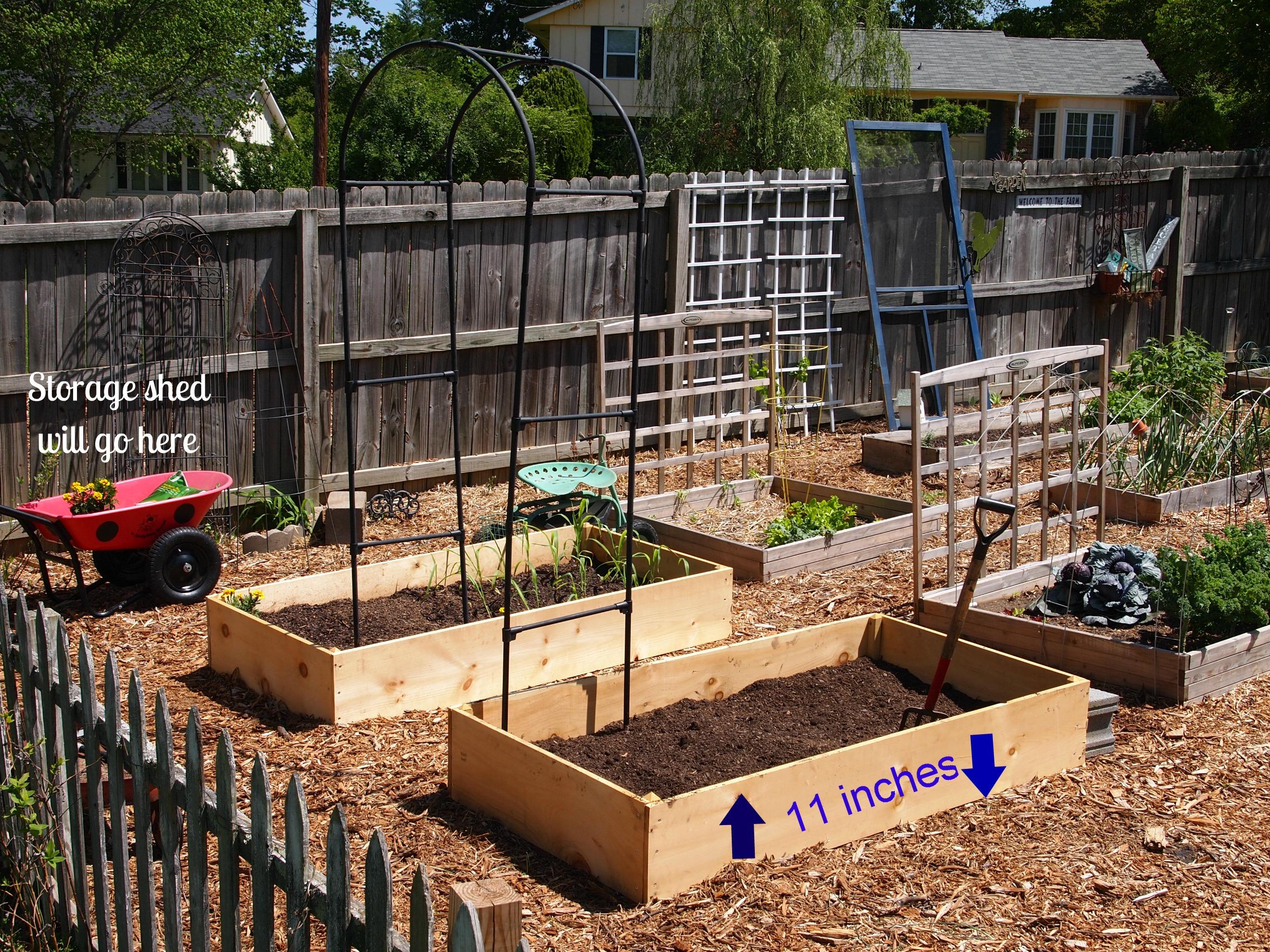 vege garden design ideas photo - 9