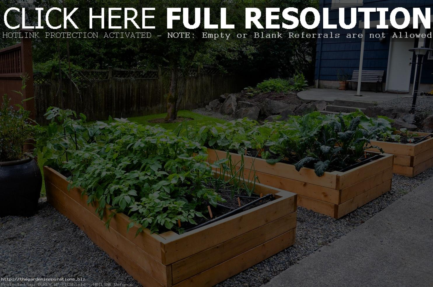 vegetable garden blueprints photo - 10