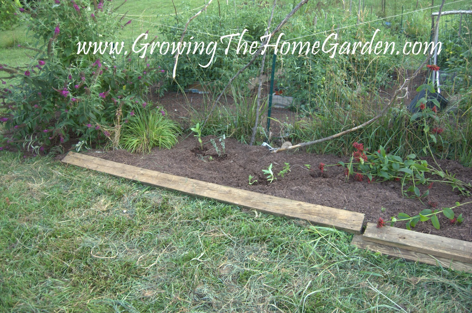 vegetable garden borders photo - 8