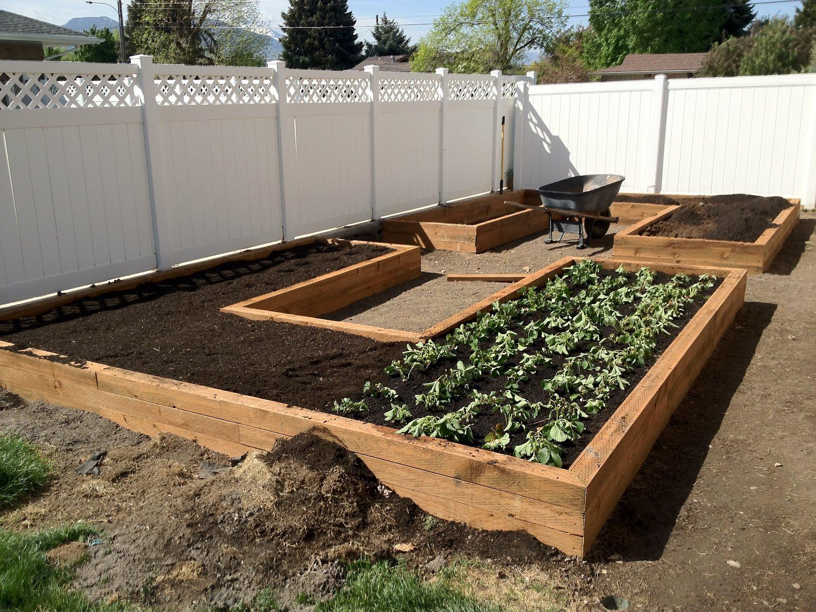 vegetable garden box ideas photo - 4