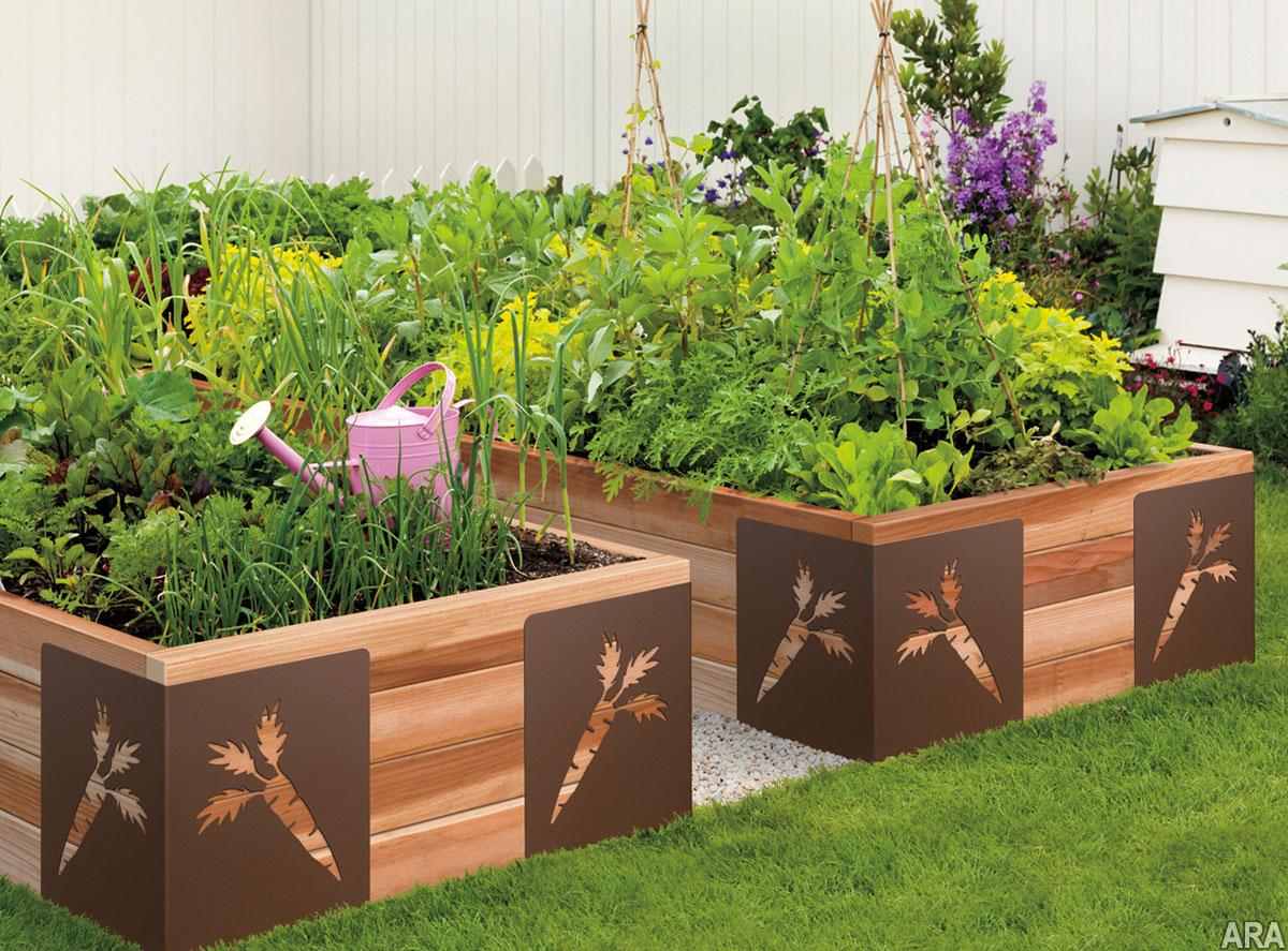 vegetable garden box ideas photo - 5