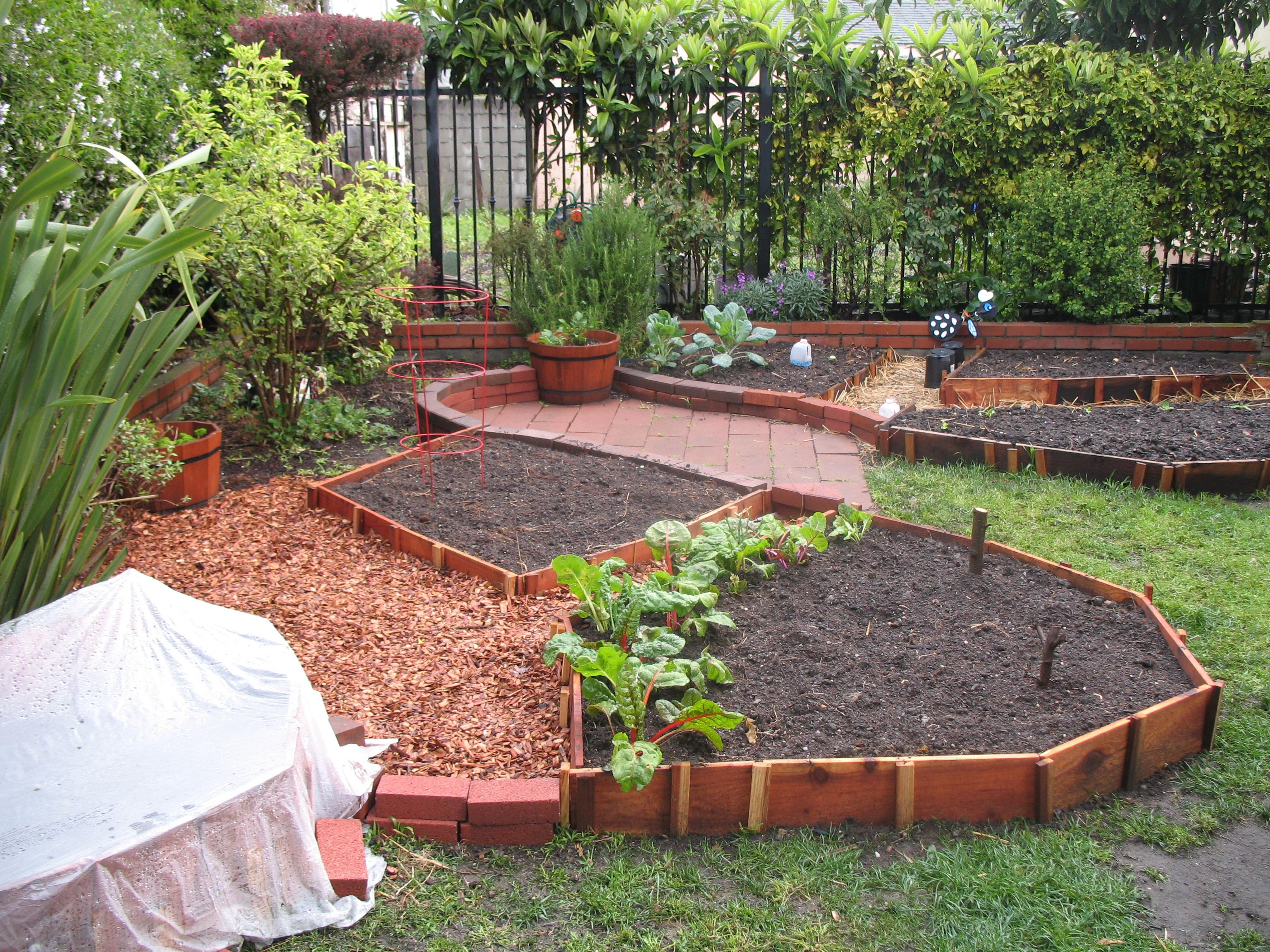 vegetable garden design ideas backyard photo - 10