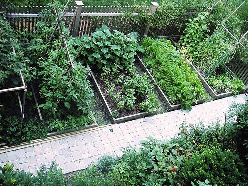 vegetable garden design ideas backyard photo - 2