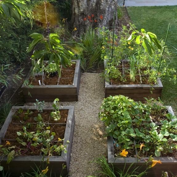 vegetable garden design ideas backyard photo - 4