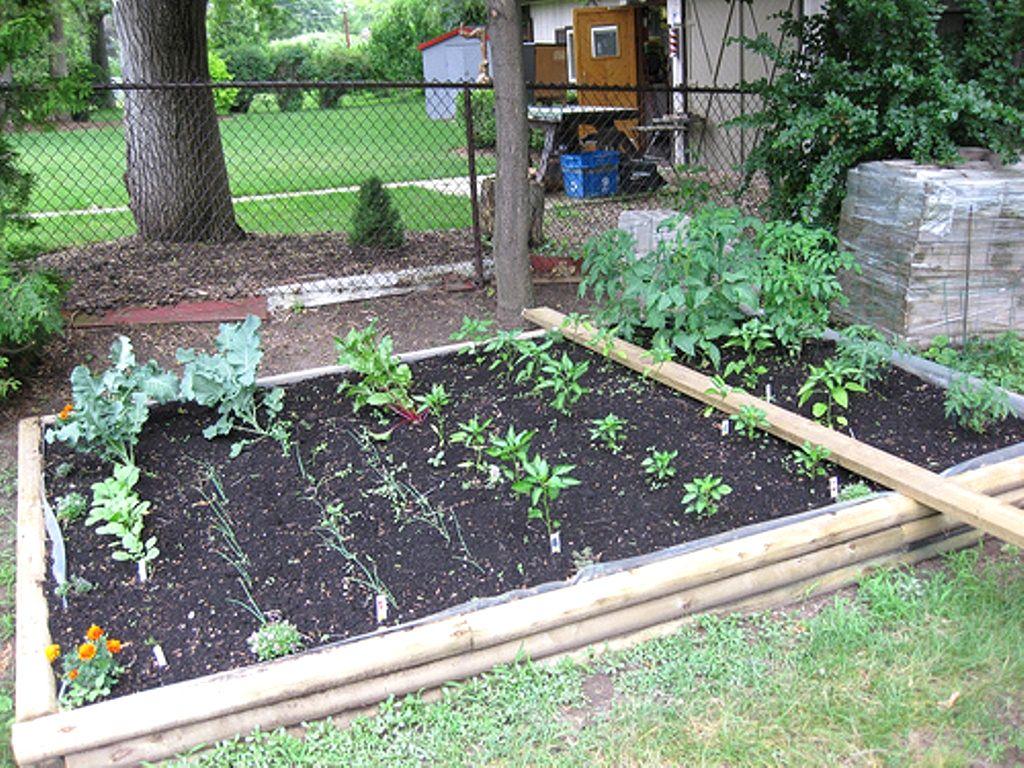 vegetable garden design ideas backyard photo - 5
