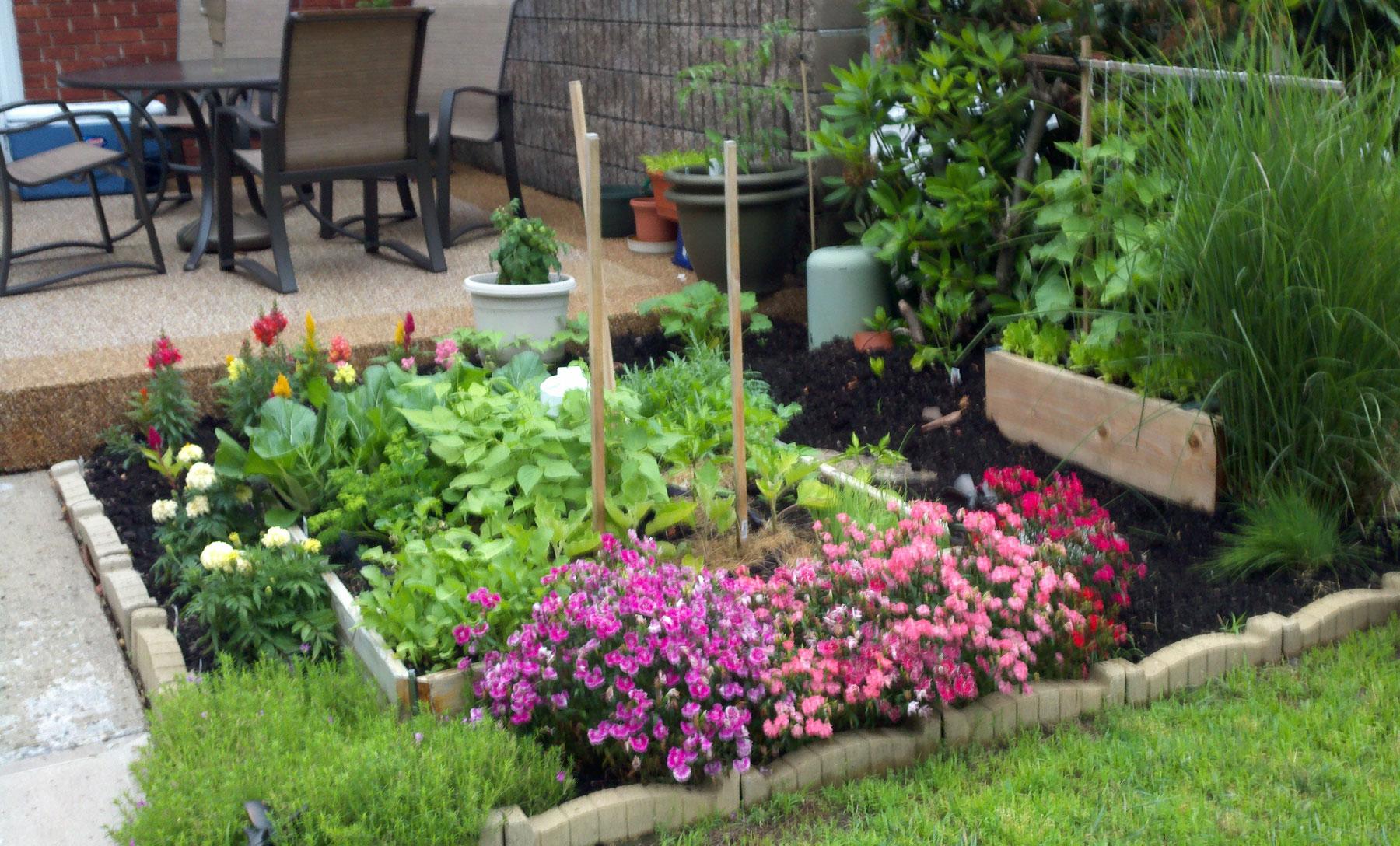 vegetable garden design ideas backyard photo - 7