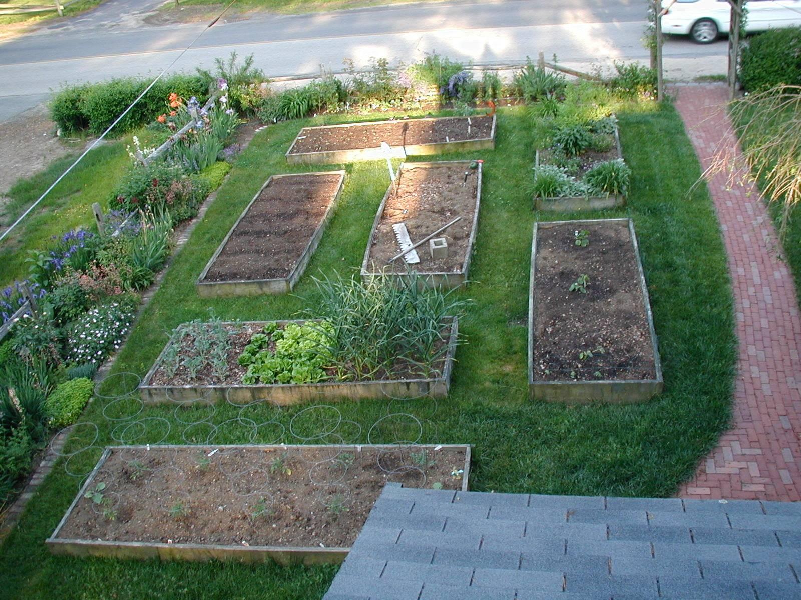 vegetable garden design ideas backyard photo - 8