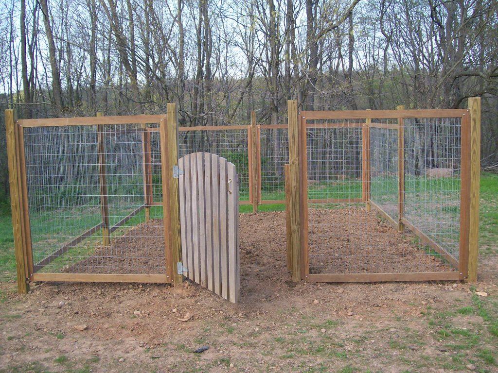 vegetable garden fence chicken wire photo - 2