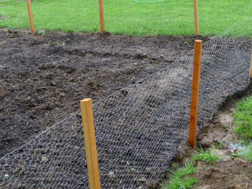 vegetable garden fence chicken wire photo - 9