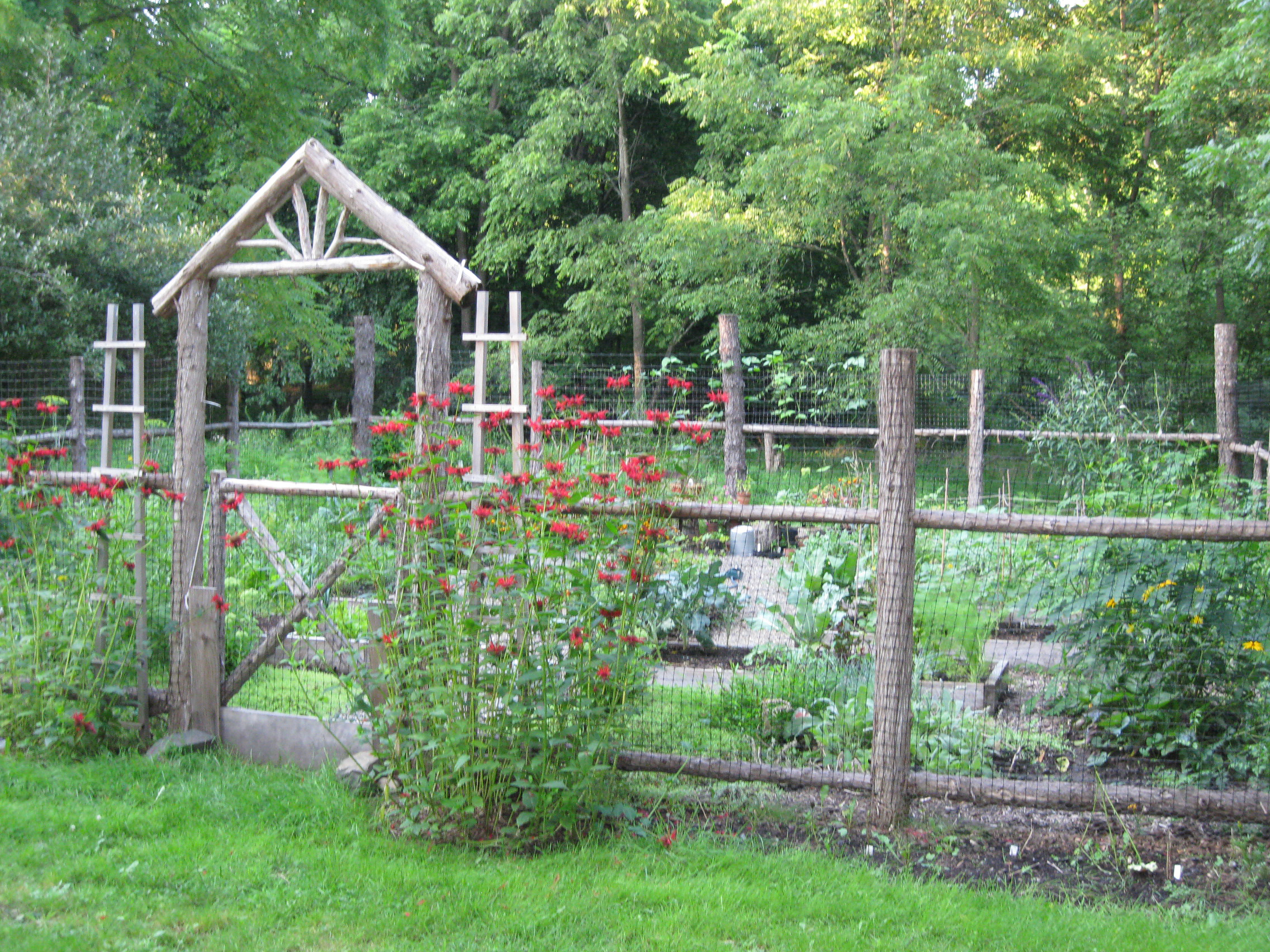 vegetable garden fence gate photo - 2