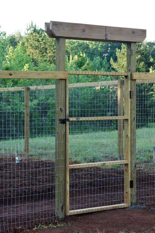 vegetable garden fence gate photo - 7