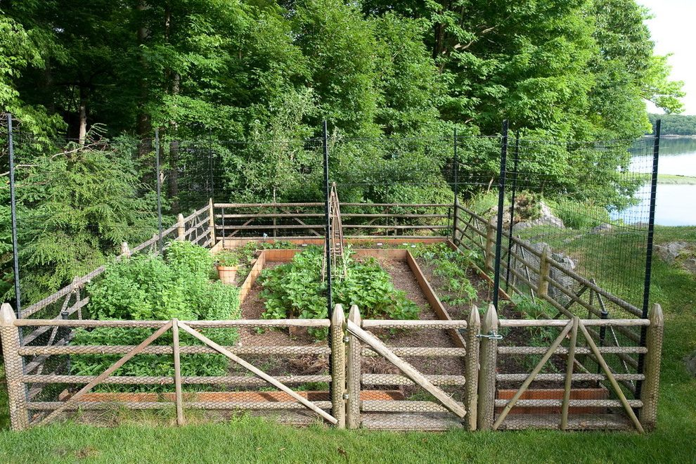 vegetable garden fence gate photo - 8