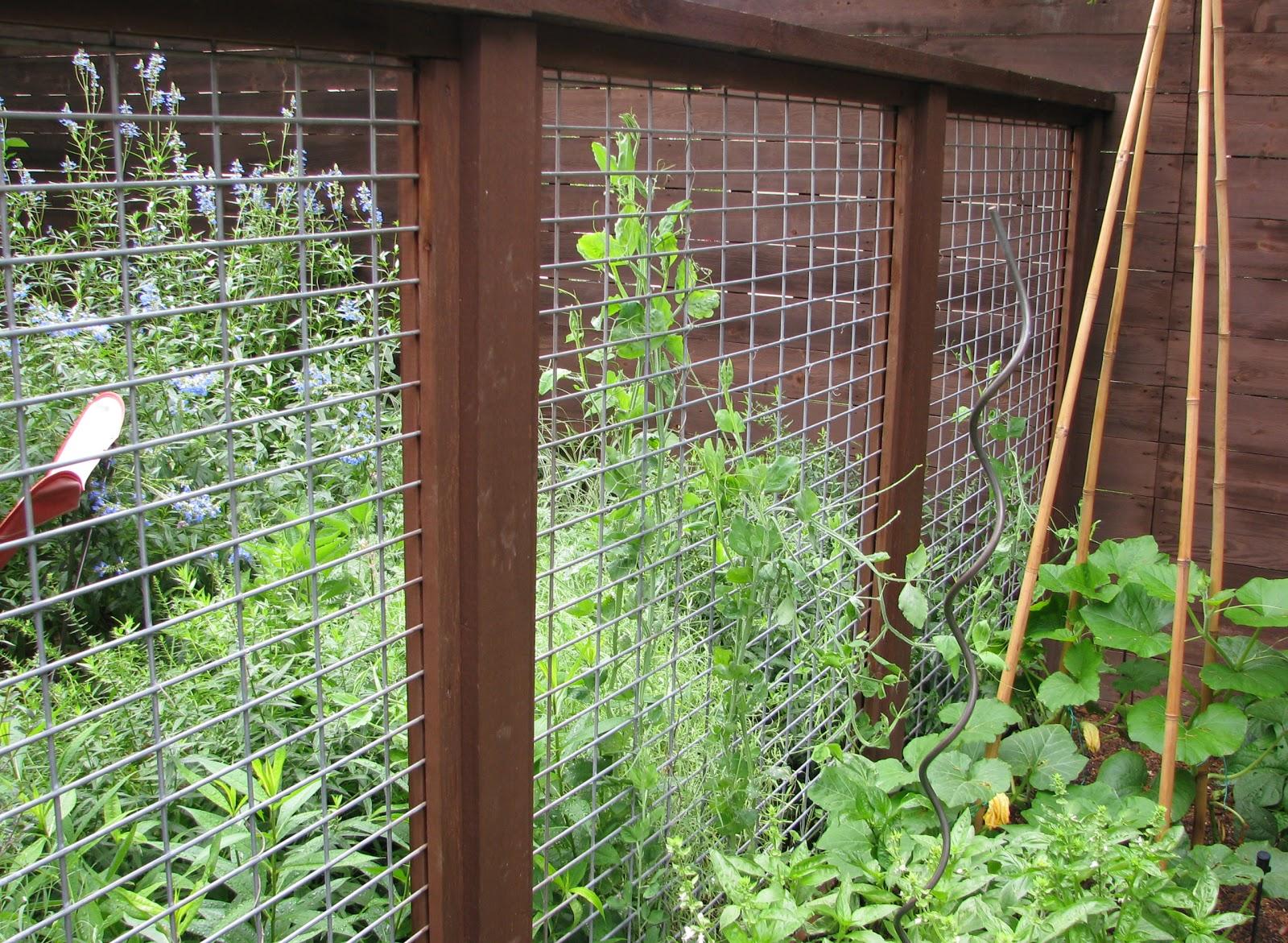 Vegetable garden fence panels | Hawk Haven