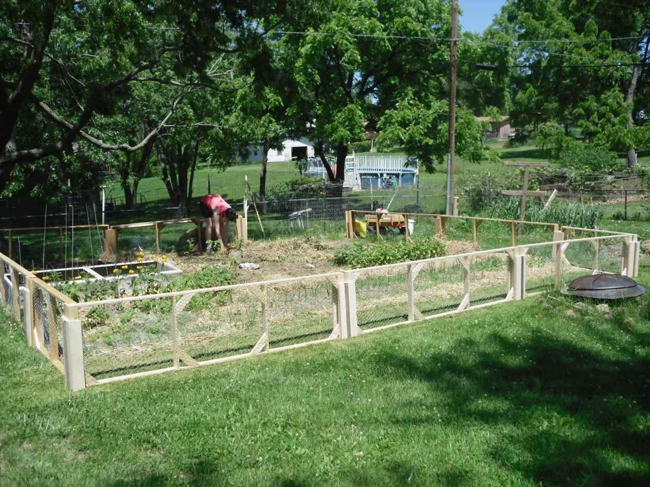 vegetable garden fence panels photo - 9