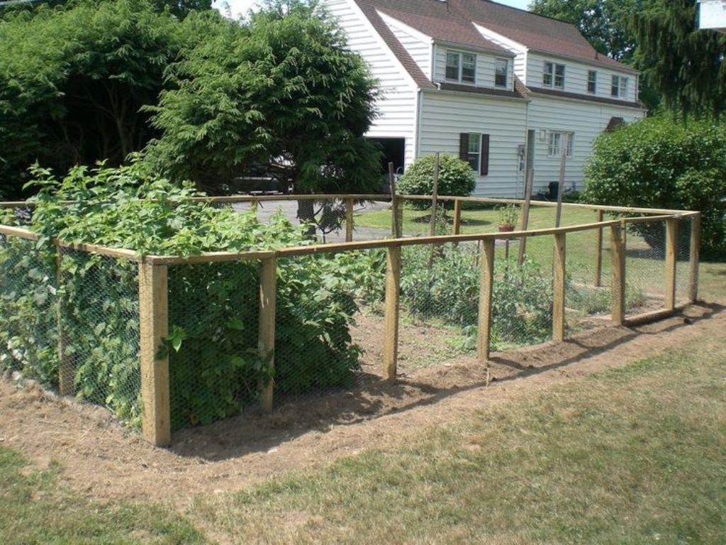 vegetable garden fence posts photo - 3
