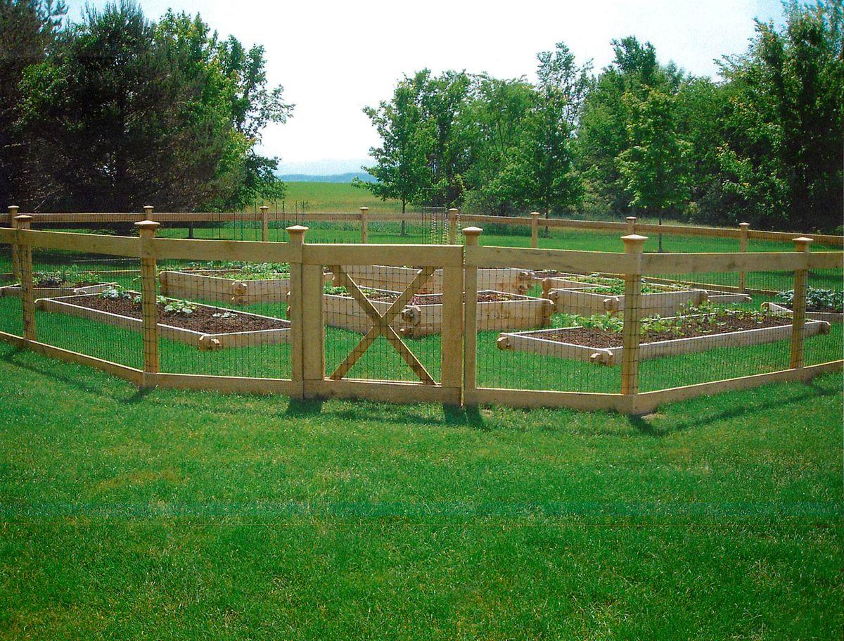 vegetable garden fence posts photo - 4