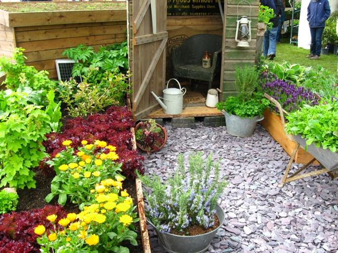 vegetable garden ideas photo - 3