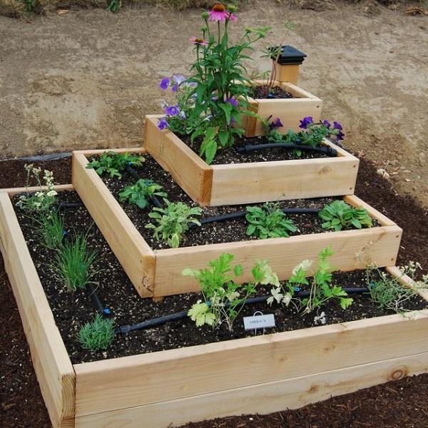 vegetable garden ideas photo - 6