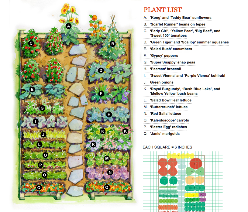 vegetable garden plans photo - 2