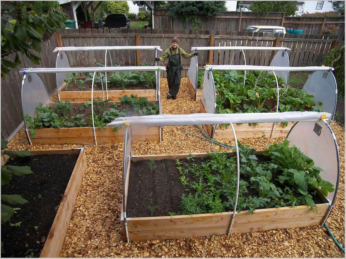 vegetable garden plans photo - 9