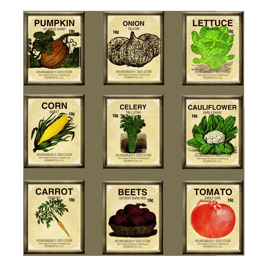 Vegetable garden seeds Hawk Haven