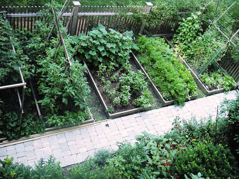 Veggie Garden Design Ideas Photo   3