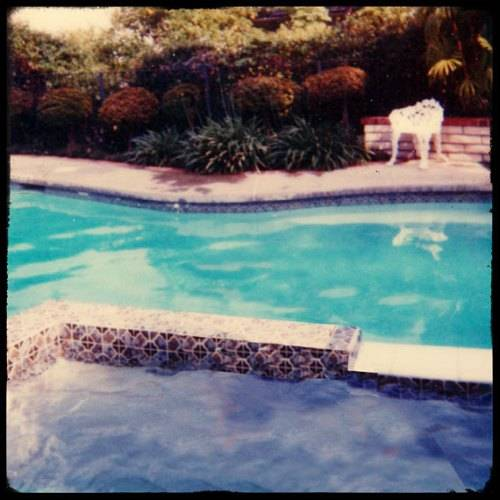 vintage swimming pool art photo - 7