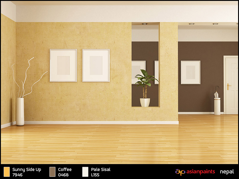 Wall colour shades asian paints | Hawk Haven