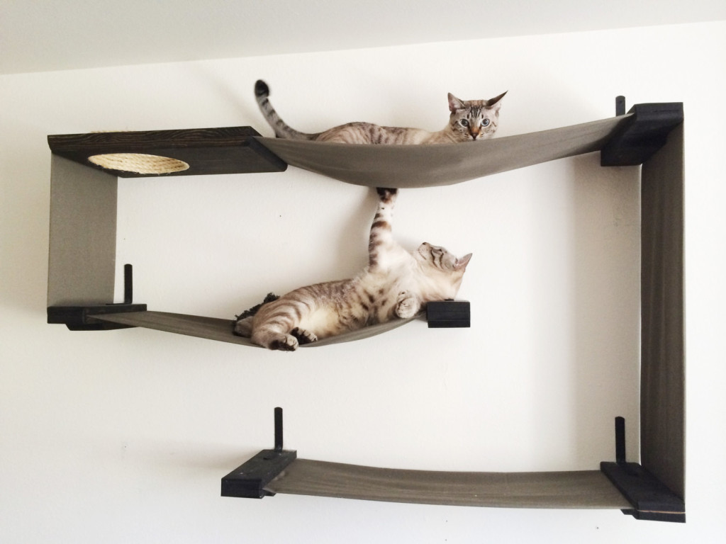 wall mounted shelves for cats photo - 1