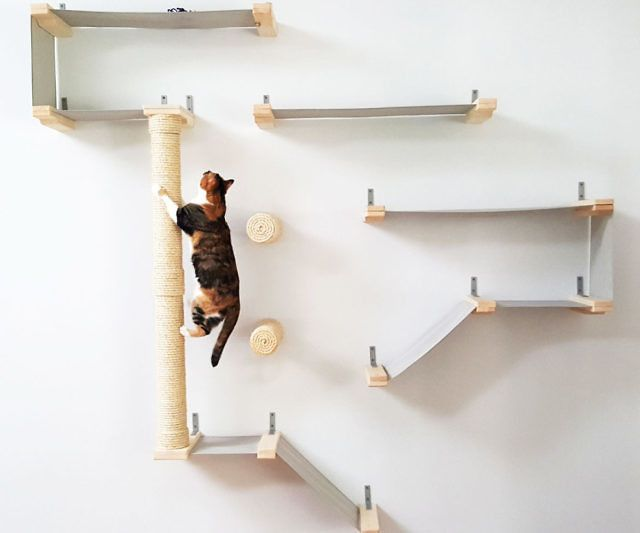 wall mounted shelves for cats photo - 7