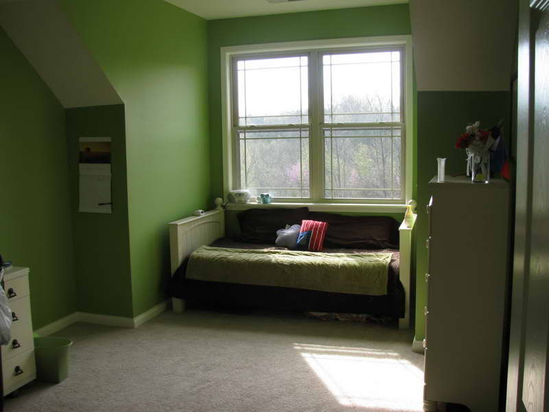 wall paint colors green photo - 8