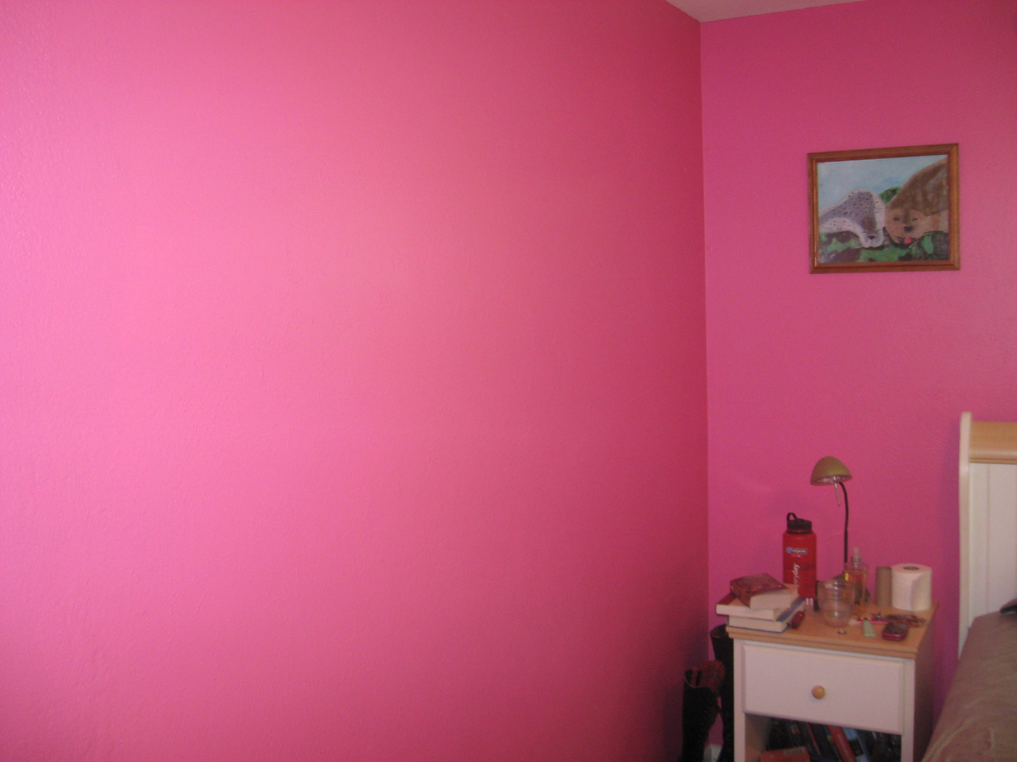 Wall paint colors pink | Hawk Haven