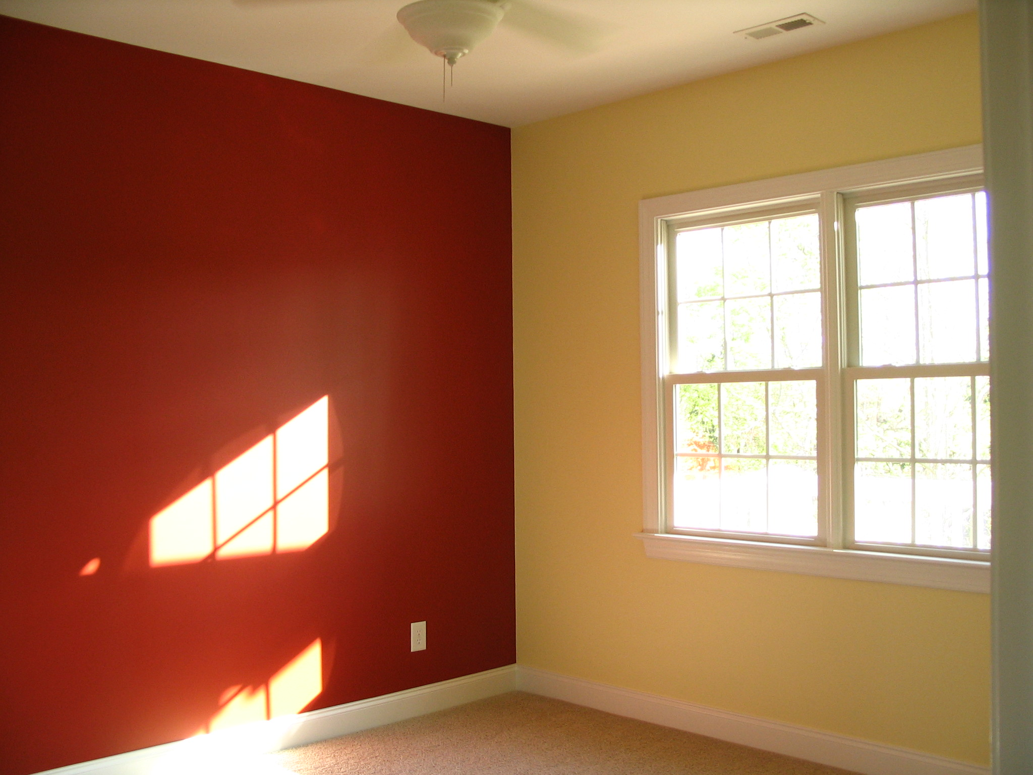 wall paint different color photo - 7